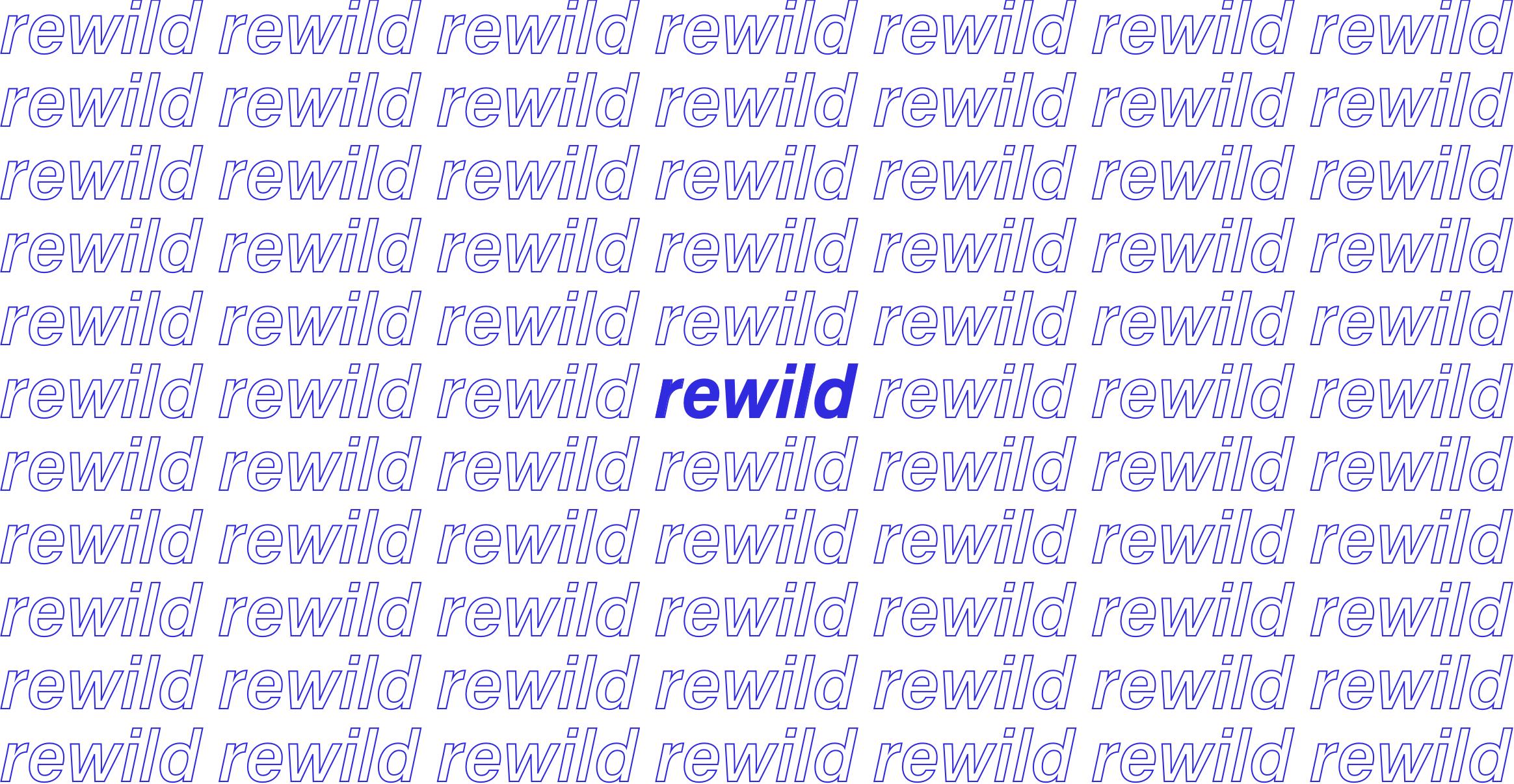 rewildheader