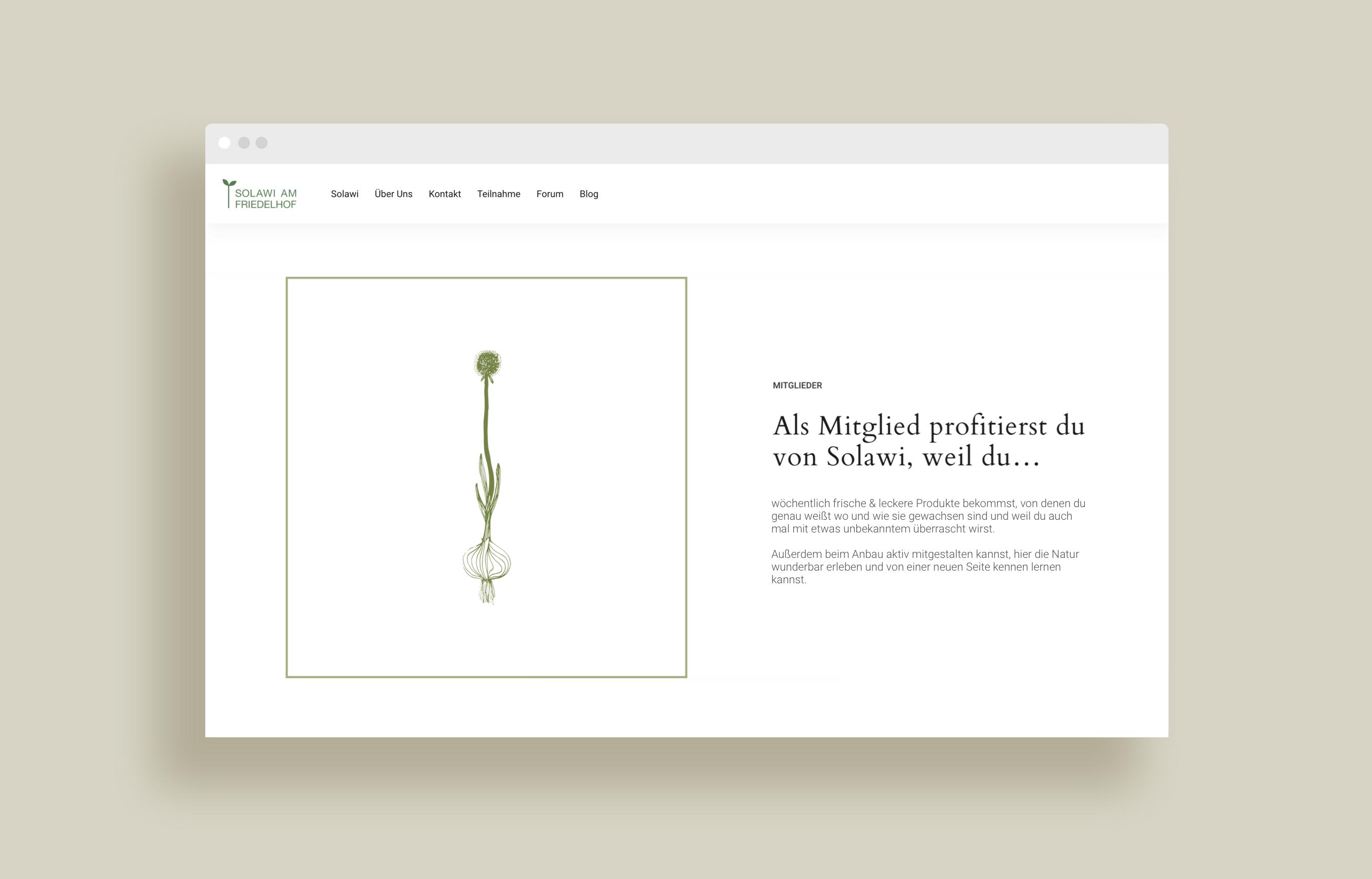 Website-Solawi-1